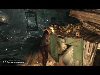 Tomb raider обзор от maddyson